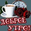 https://dp.mycdn.me/getImage?photoId=805109537192&type=4